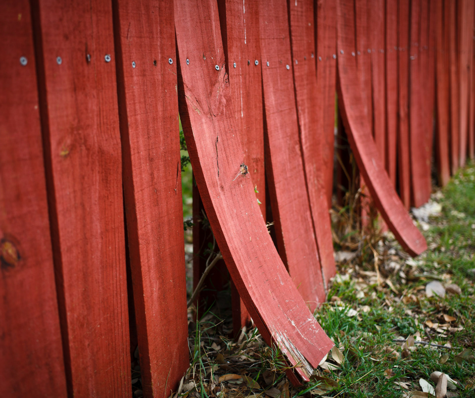 This is a picture of a damaged fence that warped over time. The wood is still in good shape because of the stain. Only a few spots needed repair. Taken in Conroe, TX